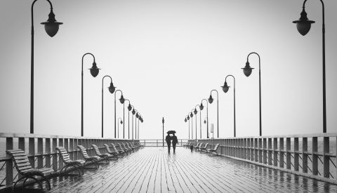 affection-benches-black-and-white-220836